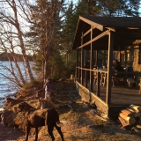 Dockside Cabin on Back Lake in Pittsburg NH