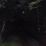 An Orb on the trail approaching the old cellar holes on the Southeast side of Archers Pond.