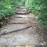 Wooden Logs to Prevent Washout Made for a Very Long Stairway to Arethusa Falls