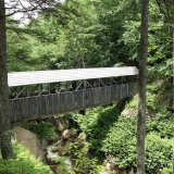 Sentinel Pine Covered Bridge - Look closely... under the bridge you can see the pine tree the bridge was built on.