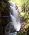 Avalanche Falls & Liberty Gorge Cascade Lincoln NH