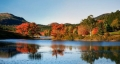 Fall Foliage Guided Tour of New England