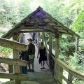 Sentinel Pine Covered Bridge