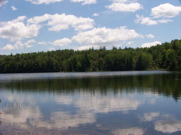 Archers Pond