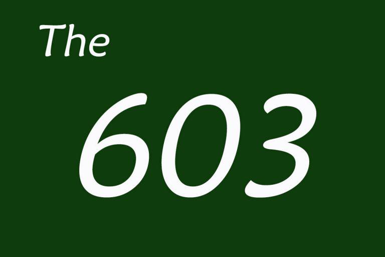 603 768x512