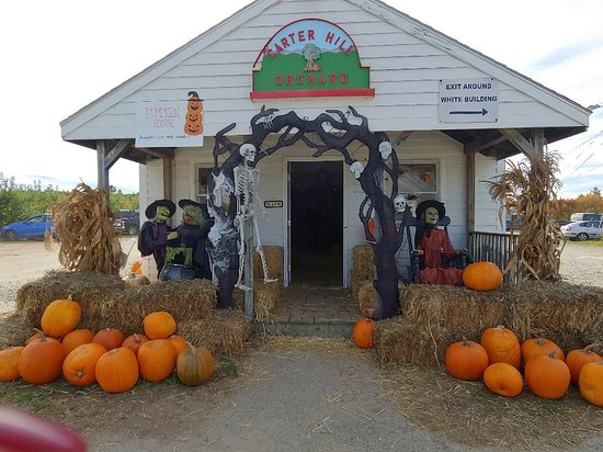 carter hill orchard