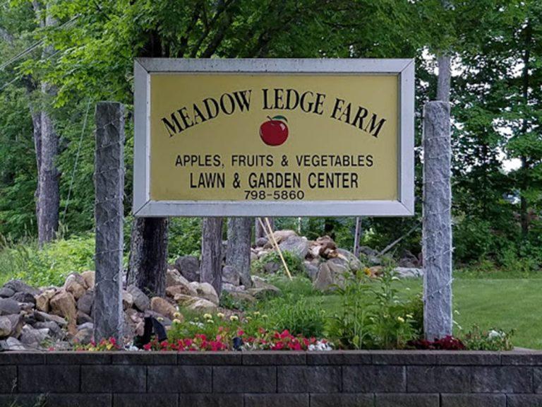 meadow ledge 768x576