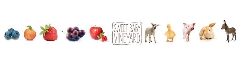 sweet baby 768x256