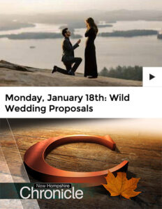 """As seen on NH Chronicle's """"Wild Wedding Proposals"""""""